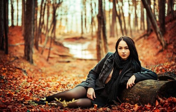 Картинка осень, листья, девушка, декольте, ножки, багрянец, Илья Жирнов