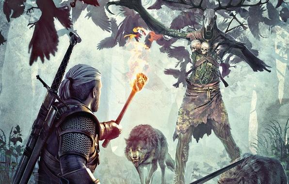 Картинка лес, волк, черепа, ведьмак, The Witcher 3, Wild Hunt