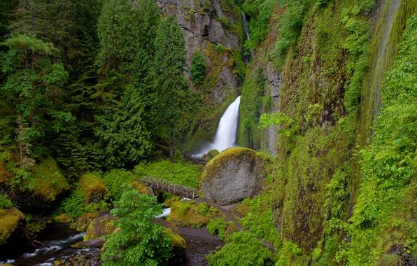 Картинка мост, река, скалы, растительность, водопад, Oregon, Wahclella Falls