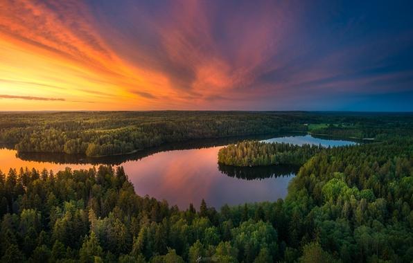 Картинка лес, небо, закат, озеро, река