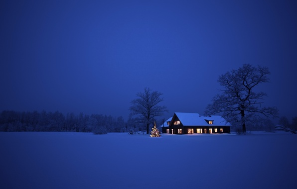 Картинка зима, снег, деревья, пейзаж, ночь, природа, дом, Рождество, Christmas, New Year