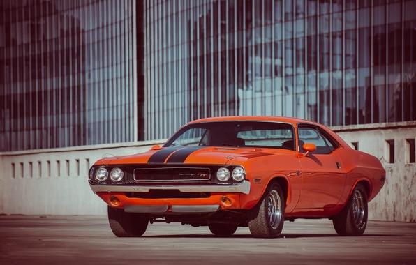 Картинка оранжевый, додж, dodge, challenger, muscle car, r/t, 1970, orange, челленджер, мускл кар