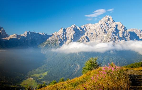 Фото обои облака, долина, скалы, небо, высота, возвышенность, тропа, Доломиты, трава, горы, Италия, Альпы, цветы, солнечно