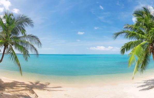 Картинка песок, море, небо, облака, пейзаж, природа, тропический пляж, панорама, красивая, sky, sea, landscape, nature, panorama, …