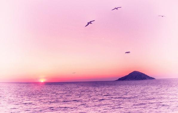 Розовый рассвет на море картины смотреть - 623