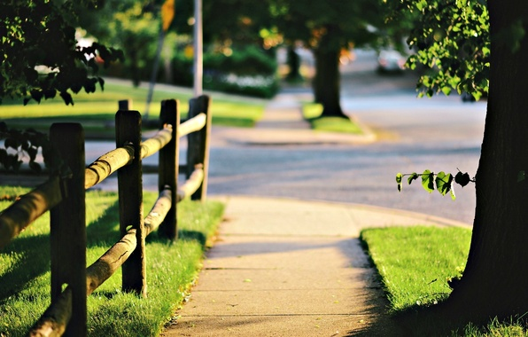 Картинка зелень, трава, листья, солнце, деревья, природа, фон, дерево, обои, забор, размытие, ограждение, день, wallpaper, листочки, …