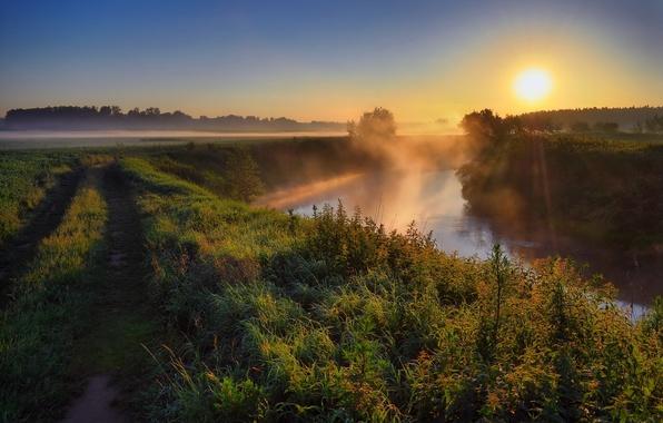 Картинка дорога, солнце, закат, природа, туман, река, фото, рассвет