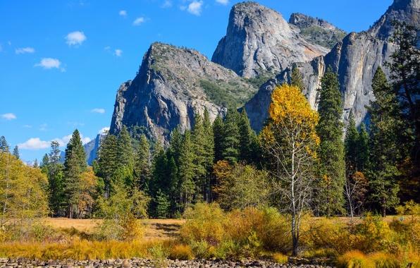 Картинка осень, лес, небо, деревья, горы, парк, камни, скалы, кусты, yosemite