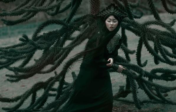 Картинка девушка, ветки, фантазия, арт, Sadness, Agnieszka Lorek, Lilian Liu