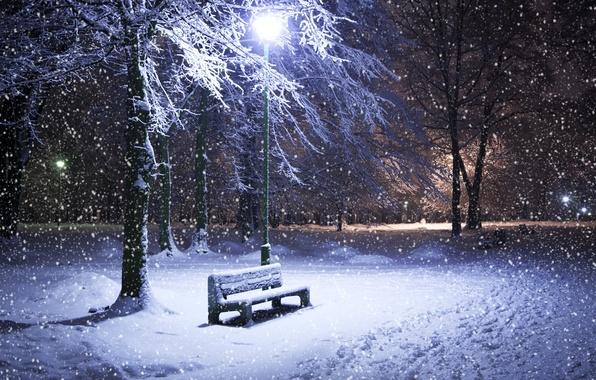 Картинка зима, снег, деревья, ночь, парк, фонарь, лавка
