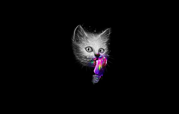 Картинка кот, взгляд, цвета, мороженое
