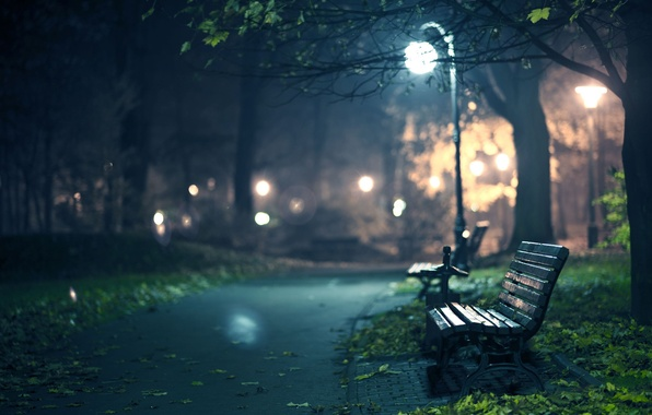Картинка осень, листья, свет, деревья, скамейка, ночь, огни, дерево, мрак, романтика, листва, дорожки, вечер, огоньки, лавочка, …