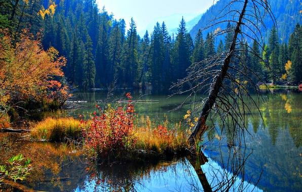 Картинка небо, пейзаж, природа, озеро, красота, деревья. листья. осень, вода. отражение
