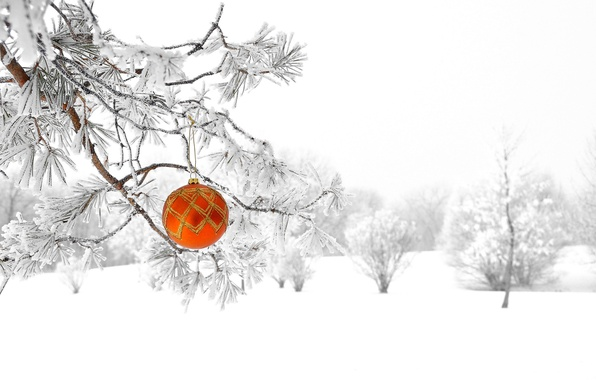 Картинка зима, лес, снег, природа, елка, новый год, рождество, шарик, украшение