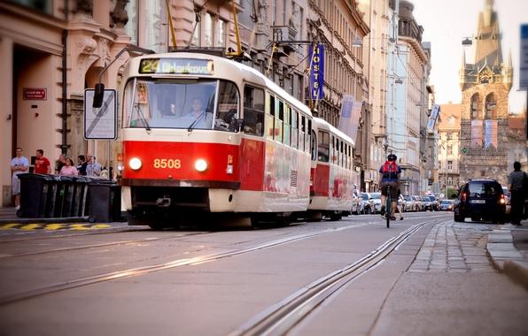 Картинка дорога, деревья, природа, город, река, вид, здания, дома, Чехия, вышка, красиво, панорама, трамвай, мосты, Prague, …