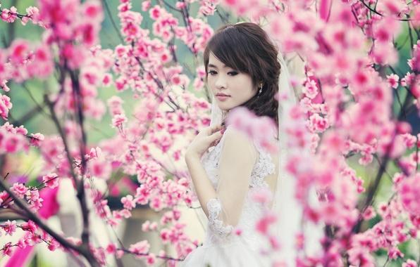 Картинка девушка, красота, весна, сад