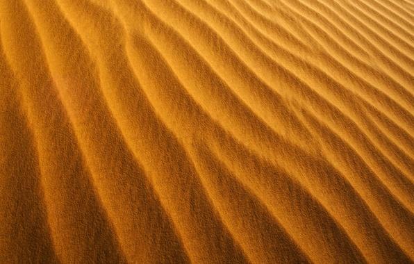 Картинка песок, оранжевый, желтый, барханы, ветер, берег, побережье, пустыня, минимализм, текстура, пыль, желтые, текстуры, оранжевые, песчинки, …