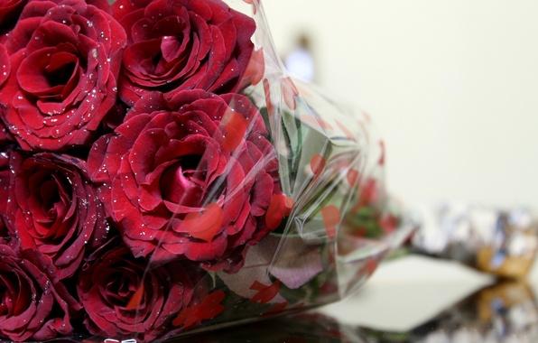 Картинка макро, цветы, розы, букет, алые