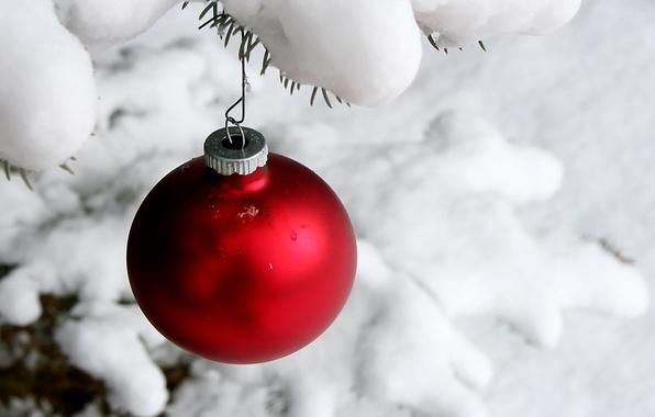 Картинка зима, снег, игрушки, новый год, шар