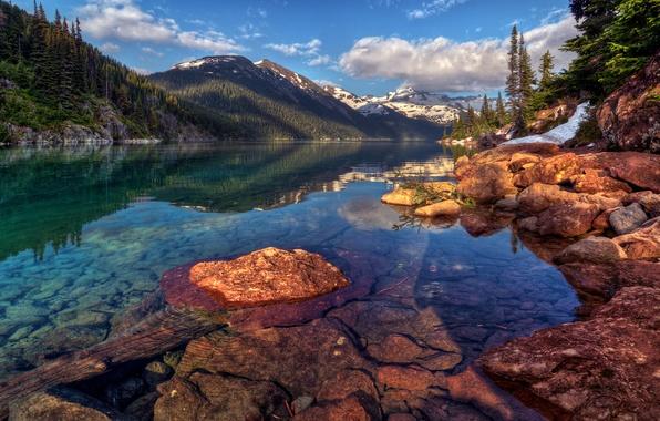 Фото обои отражение, горы, склон, вода, канада, скалы, гарибальди, облака, лес, пейзаж, снег, елки, деревья, озеро, небо, ...