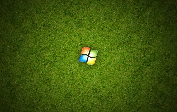 Картинка трава, зеленый, Windows