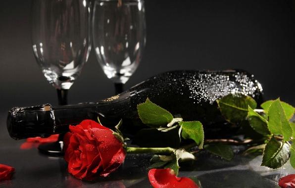 Картинка цветок, цветы, праздник, вино, роза, бутылка, розы, лепестки, бутон, бокалы, шампанское, красная