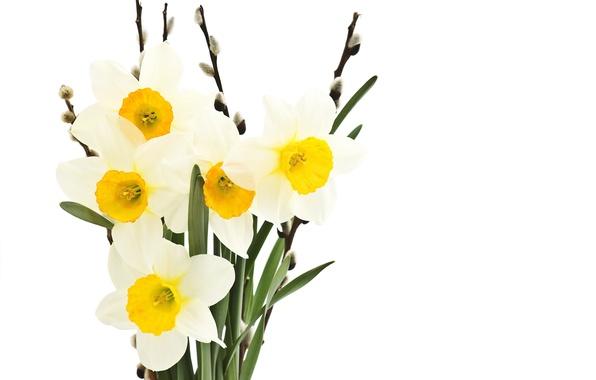 Картинка листья, цветы, свежесть, красота, букет, весна, white, белые, верба, flowers, leaves, beauty, нарцисс, spring, веточки, …