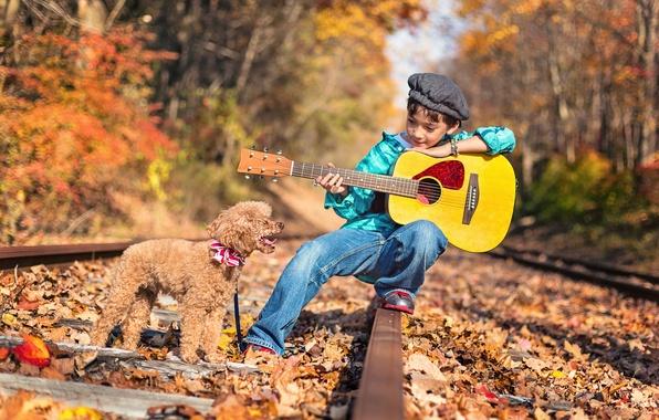 Картинка дорога, осень, лес, природа, рельсы, гитара, собака, мальчик, ребёнок, пудель, пёс