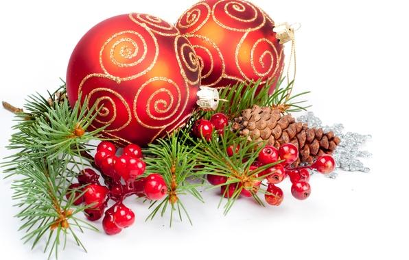 Картинка ягоды, шары, узоры, игрушки, ель, Новый Год, Рождество, красные, белый фон, Christmas, шишки, New Year, …