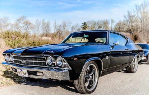 Картинка car, USA, grass, black, sky, blue, Chevrolet Chevelle SS 396