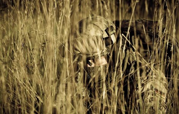 Картинка трава, Германия, засада, солдат, автомат, экипировка, бундесвер
