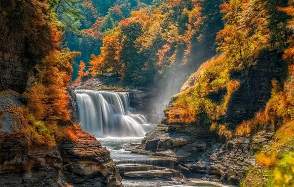 Картинка осень, лес, деревья, камни, скалы, водопад, поток, каскад, пороги