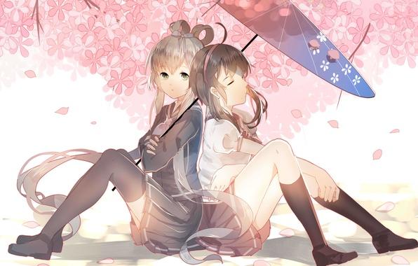 Картинка цветы, девушки, зонт, аниме, сакура, арт, vocaloid, школьницы, luo tianyi, yuezheng ling, vocaloid china, weitu