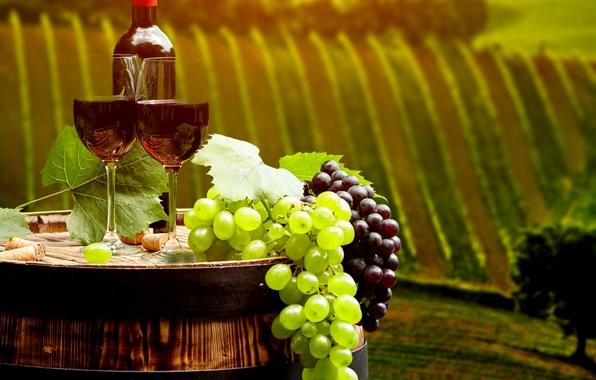 Картинка листья, пейзаж, вино, красное, поля, бутылка, бокалы, виноград, пробки, бочка, плантации, боке