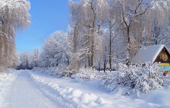 Картинка зима, иней, дорога, небо, снег, деревья, дом, улица, фонарь, сугроб