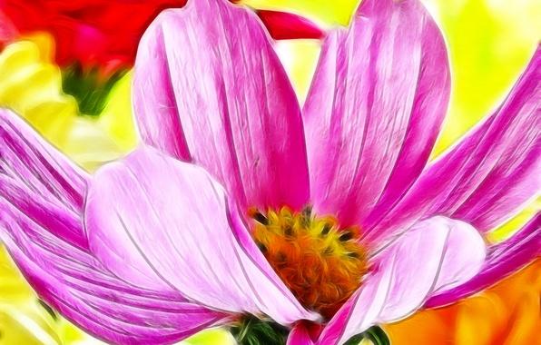 Картинка цветок, макро, линии, краски, лепестки, штрих