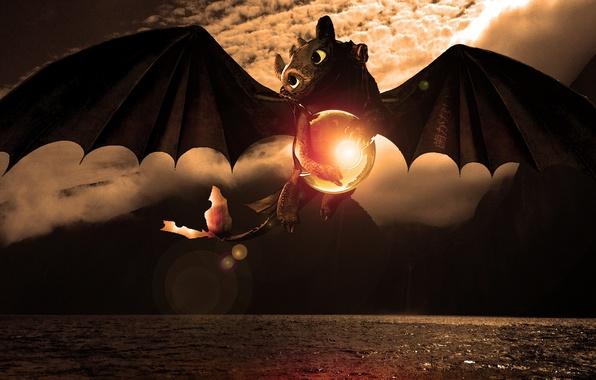 Картинка море, полёт, сфера, дракончик, Беззубик, Как приручить дракона, animated film, Wazzy88, Toothless, The pokeball of …