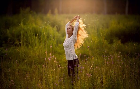 Картинка поле, лето, девушка, волосы, красота, взмах, свитер, боке