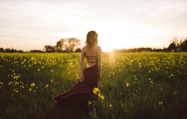 Картинка поле, лето, девушка, цветы, природа, платье, блондинка, спиной, светловолосая, Isaac Gautschi, прекрасная погода, бордовое, вишнёвое, …