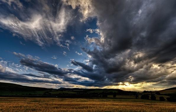 Картинка поле, ночь, восход