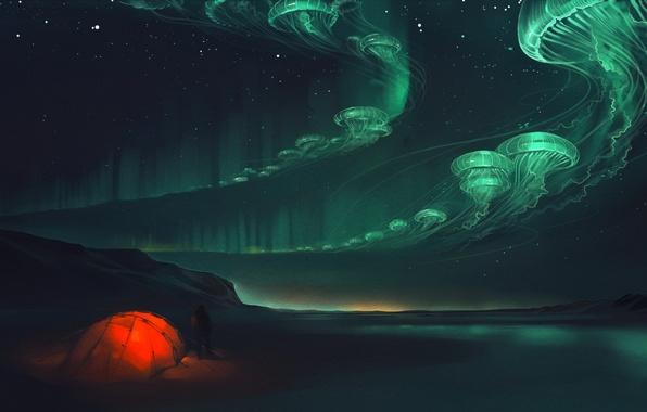 Картинка ночь, сияние, медузы, палатка, art
