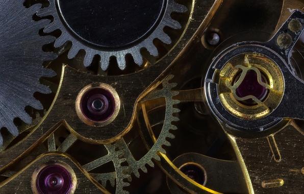 Картинка макро, время, металл, часы, механизм, шестеренка