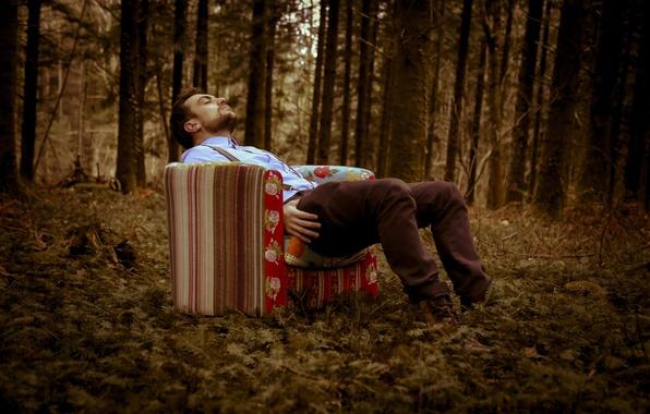Картинка лес, photographer, очнулся, Florent Bellurot, присел, уснул