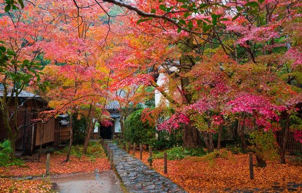 Картинка осень, листья, деревья, дом, Япония, сад, дорожка