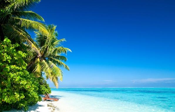 Картинка песок, пляж, небо, вода, солнце, облака, свет, пейзаж, природа, пальмы, океан, берег, остров, light, beach, …