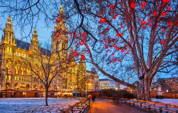 Картинка зима, снег, деревья, город, огни, праздник, улица, здания, вечер, Австрия, подсветка, Рождество, скамейки, Austria, Вена, …