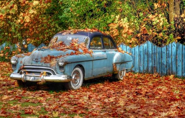 Картинка осень, деревья, ретро, листва, забор, HDR, автомобиль, «Oldsmobile»