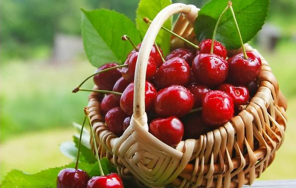 Картинка вишня, ягоды, корзинка, fresh, черешня, sweet, cherry, berries