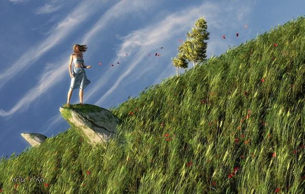 Картинка трава, девушка, природа, скала, ветер, камень, маки, лепестки, холм, арт, косогор
