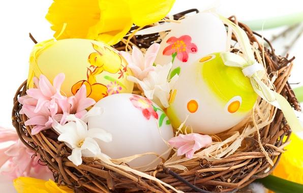 Картинка цветы, праздник, яйца, весна, Пасха, гнездо, роспись, нарциссы, Easter, пасхальные